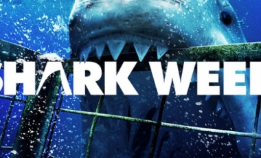 Take A Bite Out of Shark Week With This Party Guide