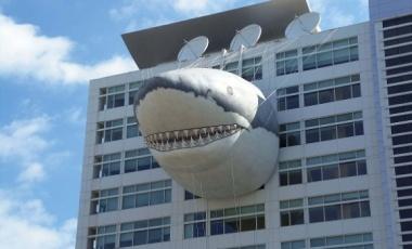 Confession: I Skipped Shark Week